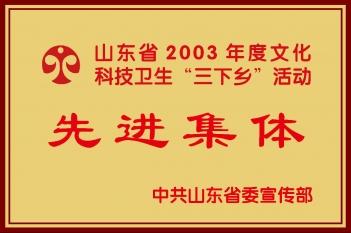 """山东省2003年度文化科技卫生""""三下乡""""活动 先进集体"""