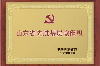 山东省先进基层党组织